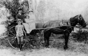 Dooley family from Fig Tree Pocket, Brisbane c1918 - SLQ Picture QLD